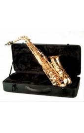 Saxophone Friedrich Muller Alto